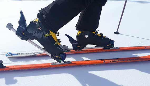 material esquí de muntanya