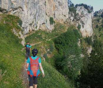 ruta dels isards al pirineu