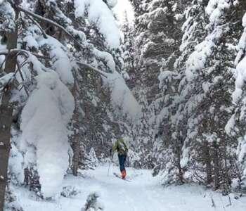 curs d'esquí de muntanya als pirineus